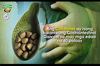 http://healinggaling.ph/ph/wp-content/uploads/sites/5/2016/06/gallstones.png