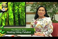 http://healinggaling.ph/ph/wp-content/uploads/sites/5/2016/09/pahabol.png