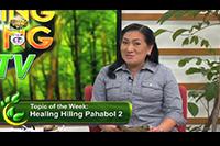 http://healinggaling.ph/ph/wp-content/uploads/sites/5/2016/09/pahabol2.png
