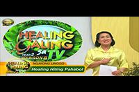 http://healinggaling.ph/ph/wp-content/uploads/sites/5/2017/09/pahabol.png