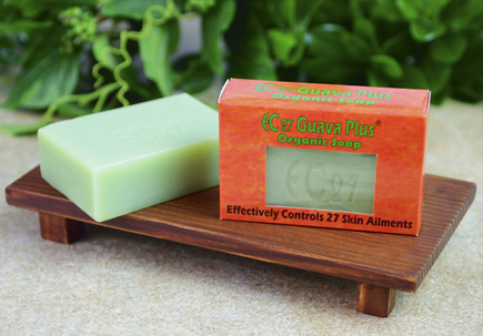 http://healinggaling.ph/shop/wp-content/uploads/2015/05/Guava-Soap.png