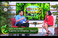 http://healinggaling.ph/wp-content/uploads/2016/12/ep11.png