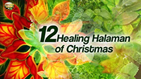 http://healinggaling.ph/wp-content/uploads/2017/01/healinghalaman-wpcf_200x113.png
