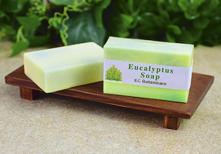http://healinggaling.ph/wp-content/uploads/2017/03/Eucalyptus_Soap.png