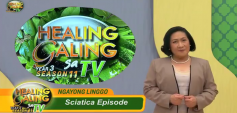 http://healinggaling.ph/wp-content/uploads/2018/05/sciatica-wpcf_237x113.png
