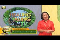 http://healinggaling.ph/wp-content/uploads/2018/11/S13EP06.jpg