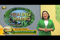 http://healinggaling.ph/wp-content/uploads/2019/03/S14EP01.png
