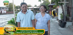 http://healinggaling.ph/wp-content/uploads/2019/04/S14EP06-wpcf_237x113.png