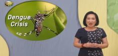 http://healinggaling.ph/wp-content/uploads/2019/11/dengue_v2-wpcf_237x113.png