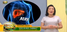 http://healinggaling.ph/wp-content/uploads/2019/12/liver_cyst-wpcf_237x113.png