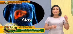 http://healinggaling.ph/wp-content/uploads/2020/02/Liver_Cyst_Replay-wpcf_237x113.png