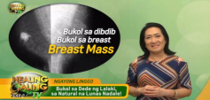 http://healinggaling.ph/wp-content/uploads/2020/02/breast-wpcf_237x113.png