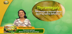 http://healinggaling.ph/wp-content/uploads/2020/03/Thyromegaly-wpcf_237x113.png